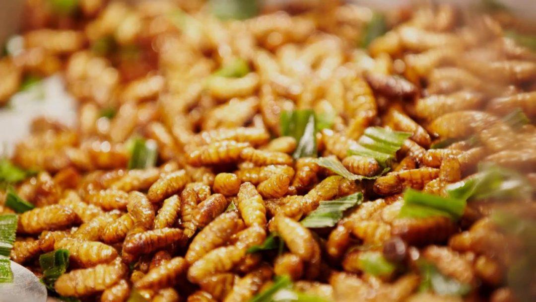 Top 10 Most Exotic Foods in Vietnam - Maze Vietnam